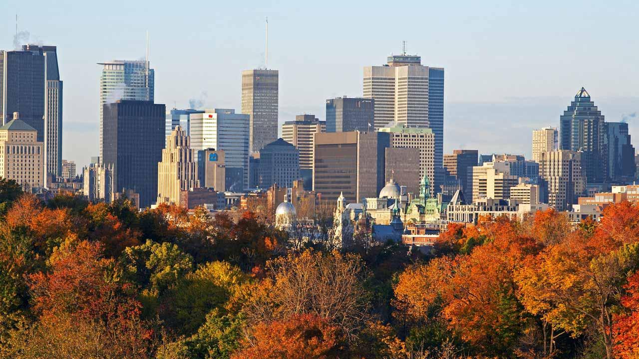 Cơ họi việc làm kinh doanh khi bắt đầu cuộc sống ở Montreal Canada